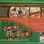 actionAID-2006